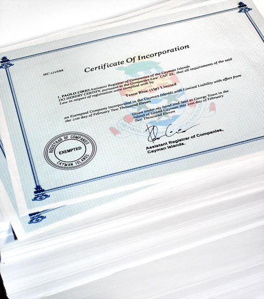 certificates loophole 4 all Paolo Cirio neural 49